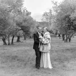 Couple dans les oliviers